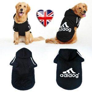 Adidog la tenue de sport pour mon chien