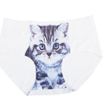 culotte-chat